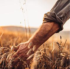 <b>LE CLUB AGRRO CROISSANCE, un fonds pour le secteur agroalimentaire</b>