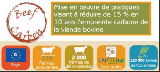 <b>BEEF CARBON, la réduction des émissions des élevages bovins</b>