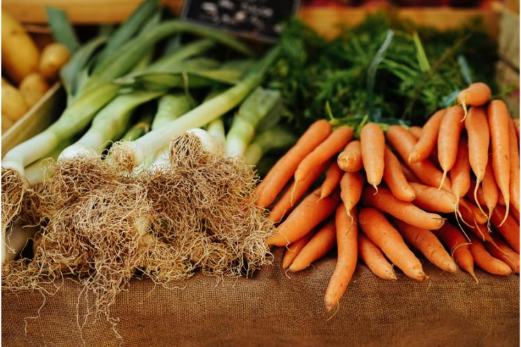 <b>BON POUR LE CLIMAT, des actions pour changer les pratiques alimentaires</b>