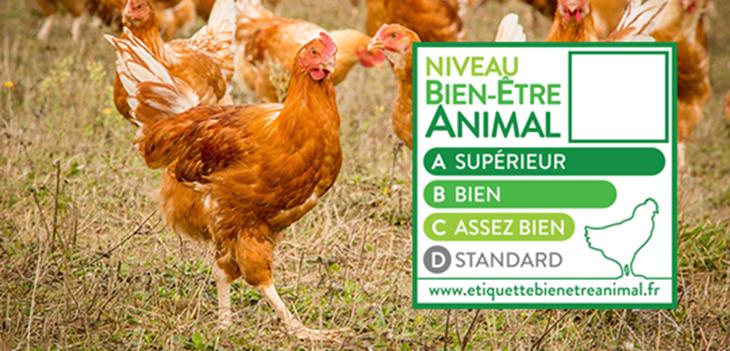 <b>CASINO pionnier sur le bien-être animal en France</b>