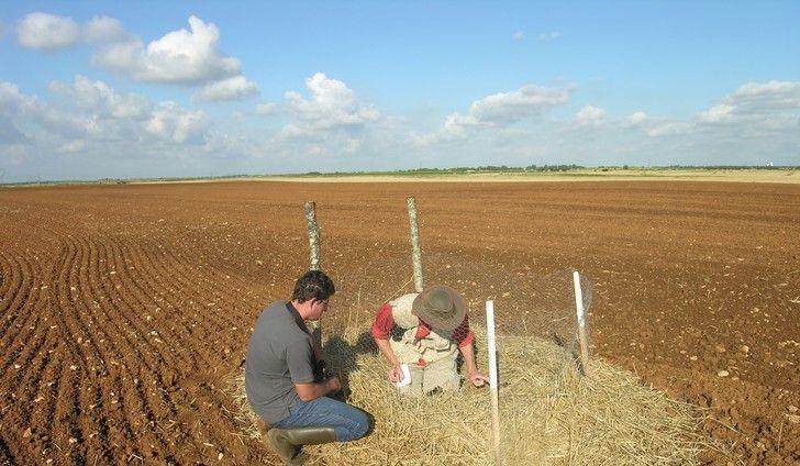 <b>Centre d'Etudes Biologiques de Chizé : Faciliter la vie des agriculteurs et viticulteurs !</b>