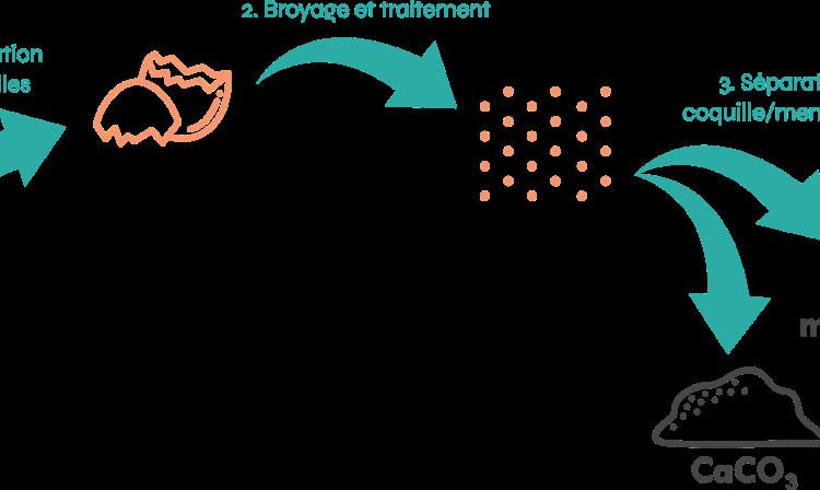 <b>CIRCUL'EGG, la valorisation de biodéchets issus de casseries d'œufs</b>