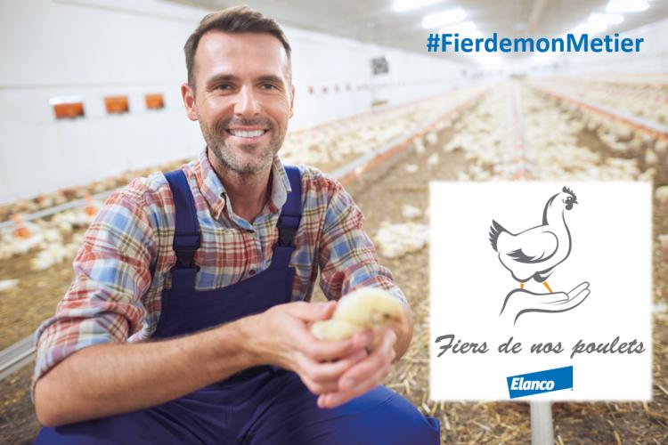 <b>ELANCO Fiers de nos poulets</b>