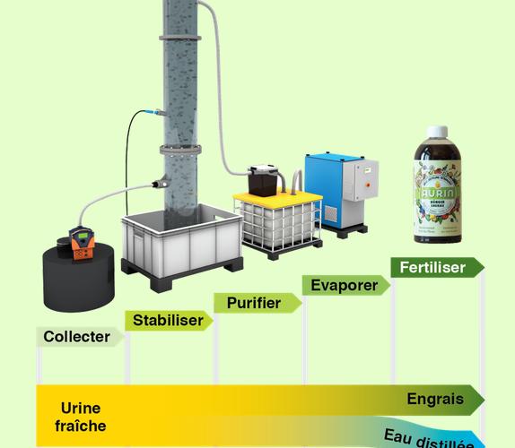 <b>ECOLE POLYTECHNIQUE DE ZÜRICH : L'urine, un fertilisant naturel pour les sols</b>