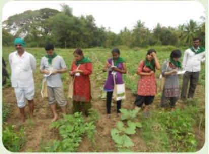 <b>ZERO BUDGET, en INDE, pour une agriculture naturelle et économe</b>