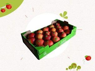 <b>JULIET, le bio associé à des emballages recyclables ou compostables</b>