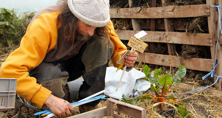 <b>LE POTAGER DE SANTE : Une agriculture bio et productive</b>