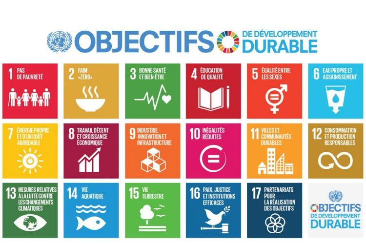 <b>LIDL, contributeur aux objectifs de développement durable</b>
