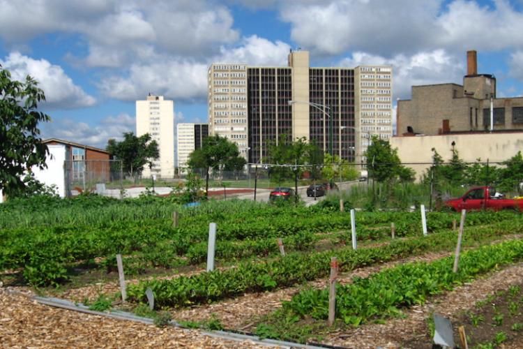 <b>Une inclusion juste de l'espace rural dans les villes</b>
